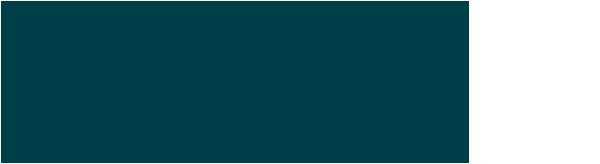 Logo Elipse maagballon